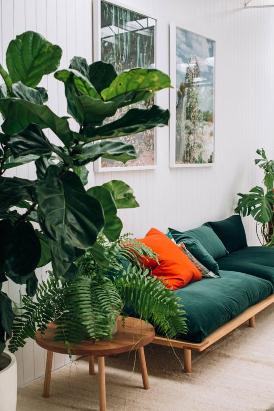 greencouch